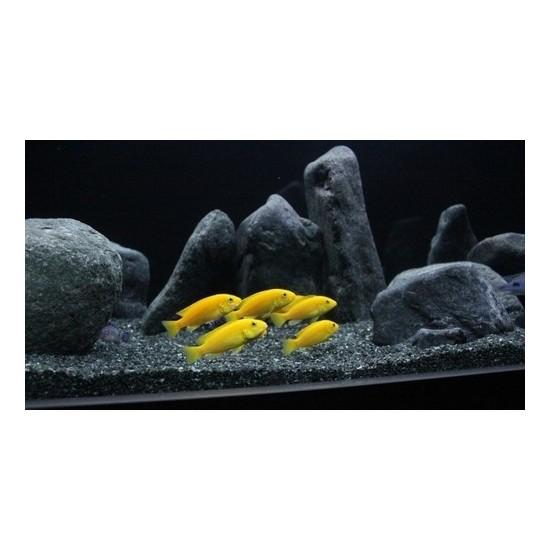 Akvaryum Kumu Bazalt 10 kg (1-3 Mm) - (2-4 Mm) Bitki Kumu + 1 kg Kuvars Hediye